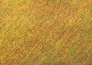 夢幻次元のパノラマ13.jpg